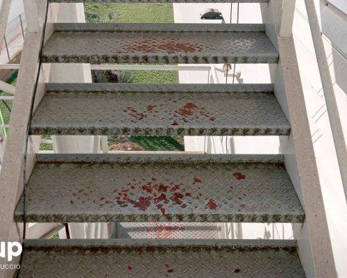 02 kh7 mantenimiento empresas retail ingrup estudi granollers estado deteriorado escaleras interior